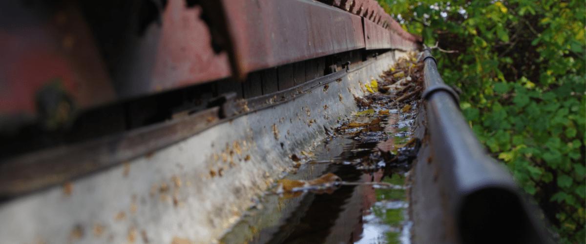 Gutter Replacement - Gutter Tex - Cibolo, TX - Close up of dirty worn gutter
